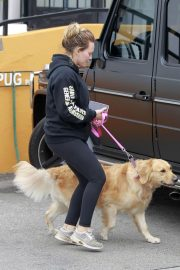 Hilary Duff Out with Her Dog in Studio City 2018/05/31 6
