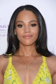 Bianca Lawson at Hollyrod 20th Annual Designcare at Cross Creek Farm Event in Malibu 2018/07/14 1