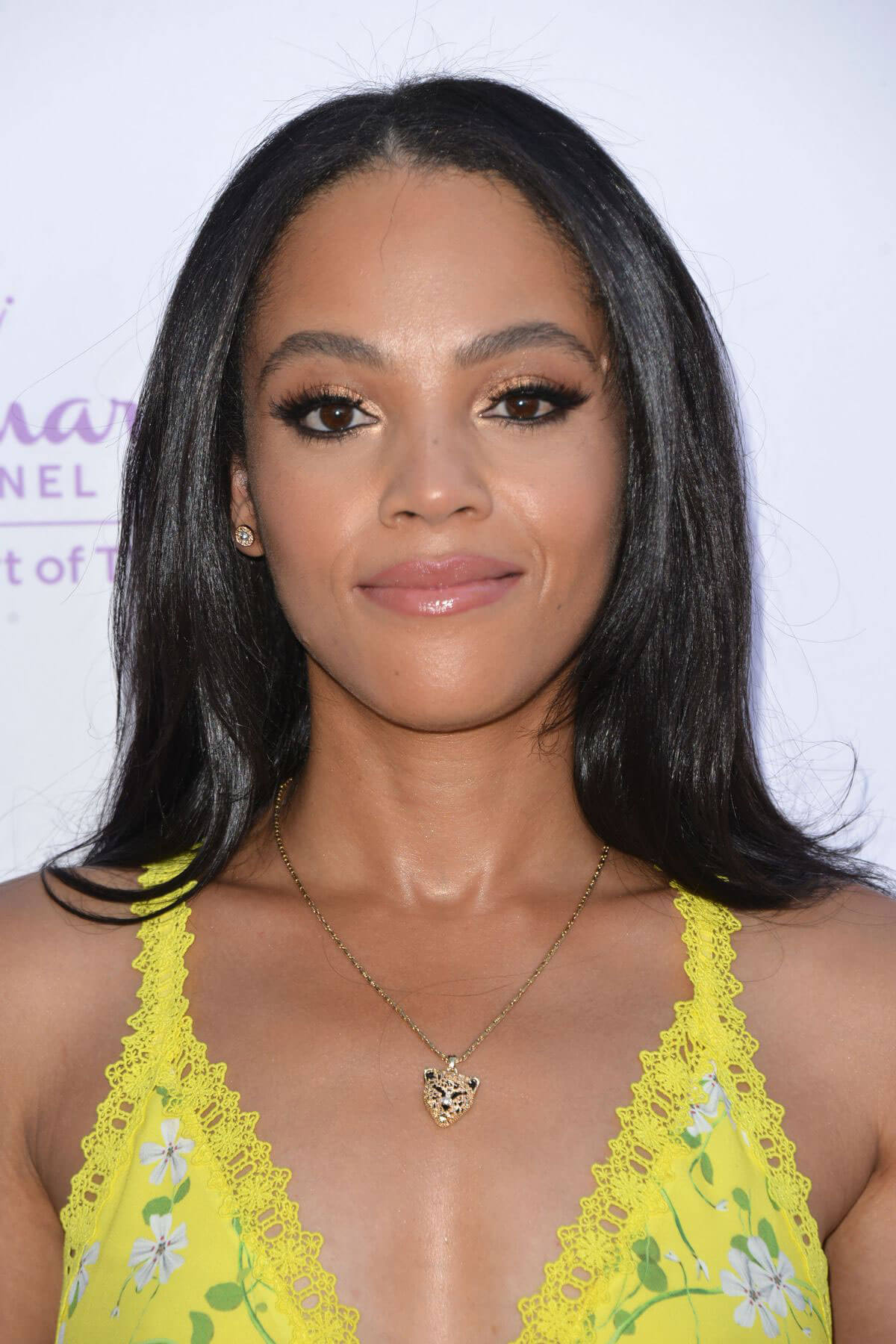 Bianca Lawson at Hollyrod 20th Annual Designcare at Cross ...