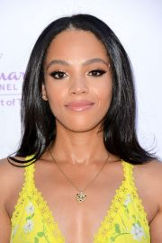 Bianca Lawson at Hollyrod 20th Annual Designcare at Cross Creek Farm Event in Malibu 2018/07/14 9