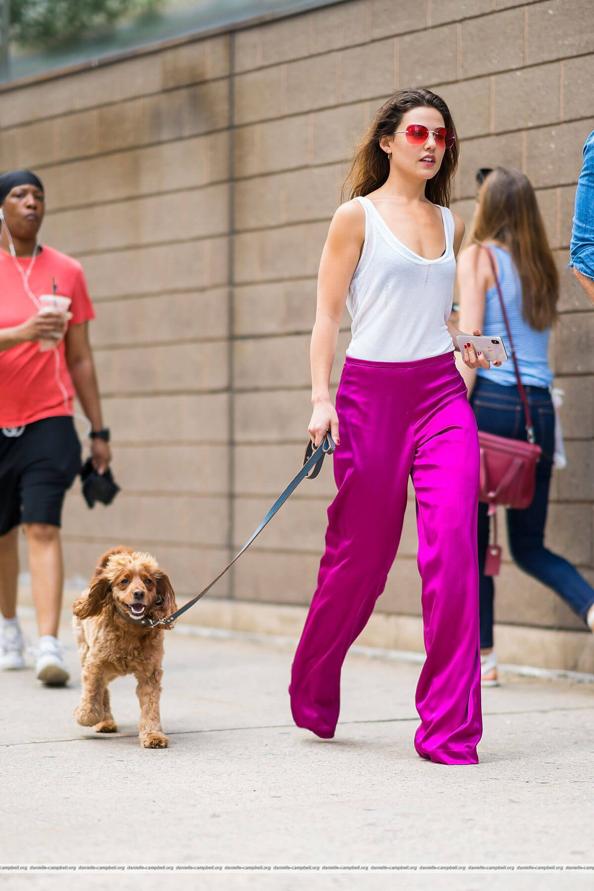 Danielle Campbell Out with her Dog in New York 2018/06/19 1