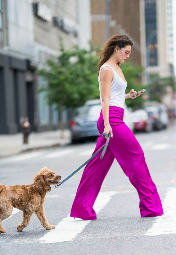 Danielle Campbell Out with Her Dog in New York 2018/06/26 1