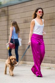 Danielle Campbell Out with Her Dog in New York 2018/06/26 7