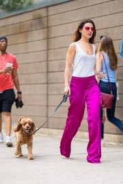 Danielle Campbell Out with Her Dog in New York 2018/06/26 8