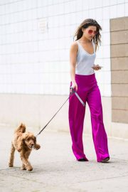Danielle Campbell Out with Her Dog in New York 2018/06/26 11