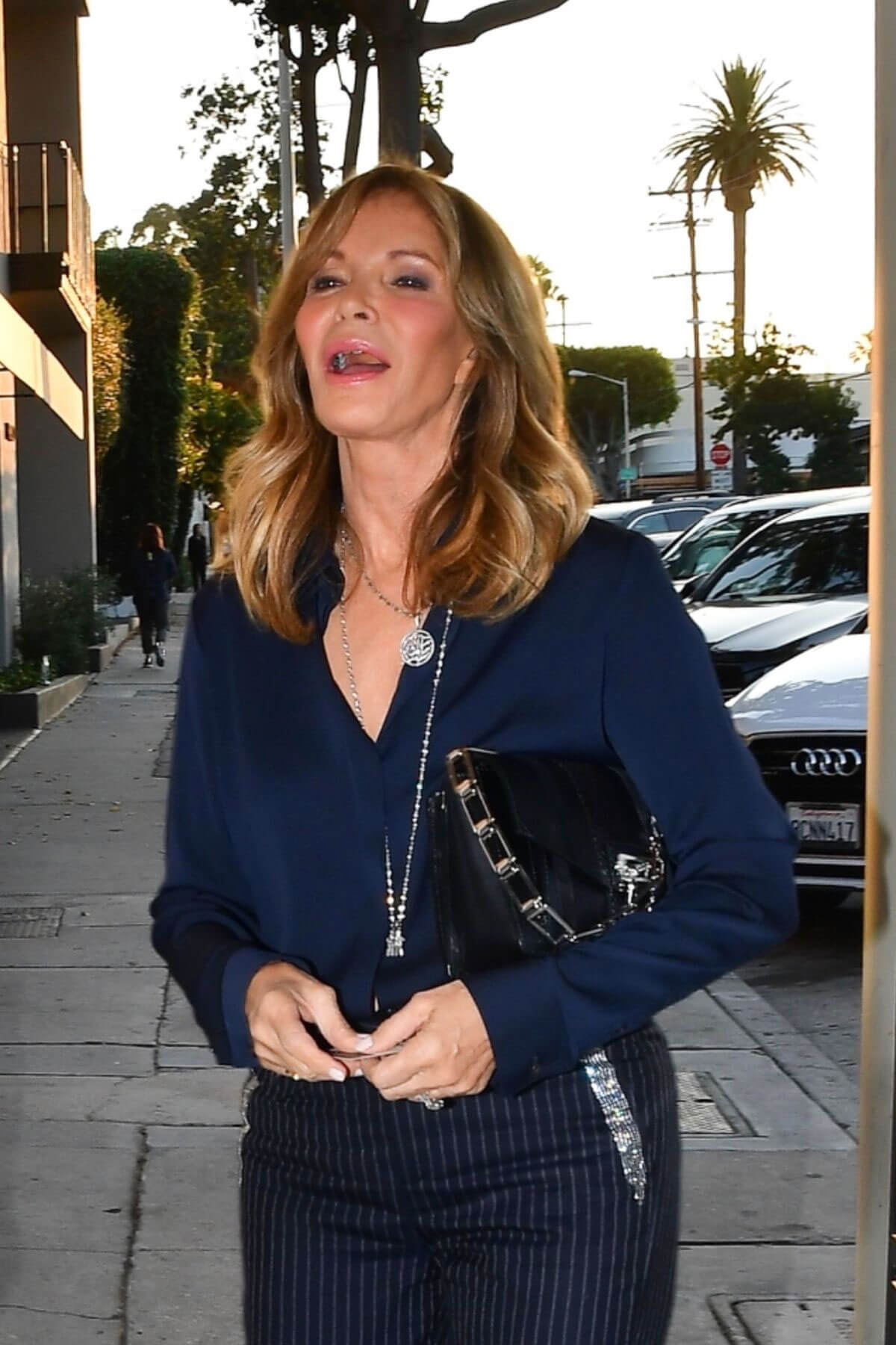 Jaclyn Smith Out for Dinner at Craig's in West Hollywood ...