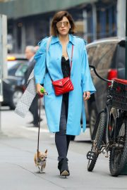 Katharine McPhee Out with Her Dog in New York 2018/07/27 5