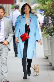 Katharine McPhee Out with Her Dog in New York 2018/07/27 9