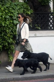 PIPPA MIDDLETON Out with Her Dog in London 05/12 2