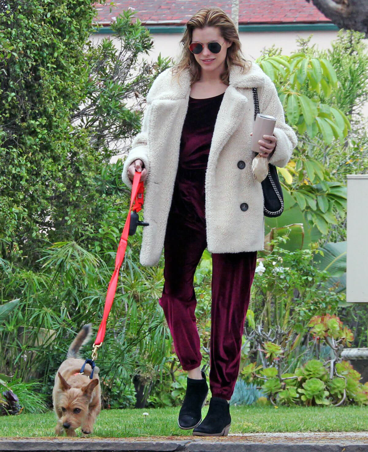 Rachael Taylor Out With Her Dog in Los Angeles 2018/05/12 1