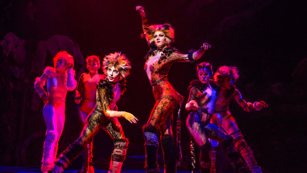 "Taylor Swift, Jennifer Hudson, Ian McKellen, and James Corden to act in Andrew Lloyd Webber's ""Cats"" 2018/07/20 1"