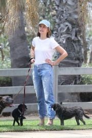 Calista Flockhart Out with Her Dogs in Santa Monica 2018/08/20 1