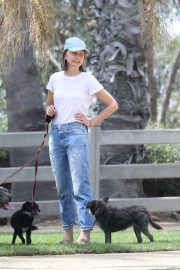 Calista Flockhart Out with Her Dogs in Santa Monica 2018/08/20 2