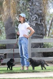 Calista Flockhart Out with Her Dogs in Santa Monica 2018/08/20 4