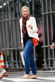 Cameron Diaz Out Shopping in New York 2018/09/27 3