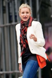 Cameron Diaz Out Shopping in New York 2018/09/27 6