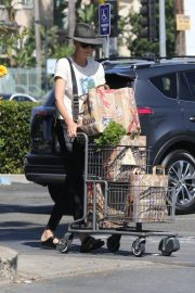 Charlize Theron Shopping at Bristol Farms in Los Angeles 2018/09/09 2