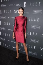 Daniela Braga at E!, Elle and IMG Party in New York 2018/09/05 2