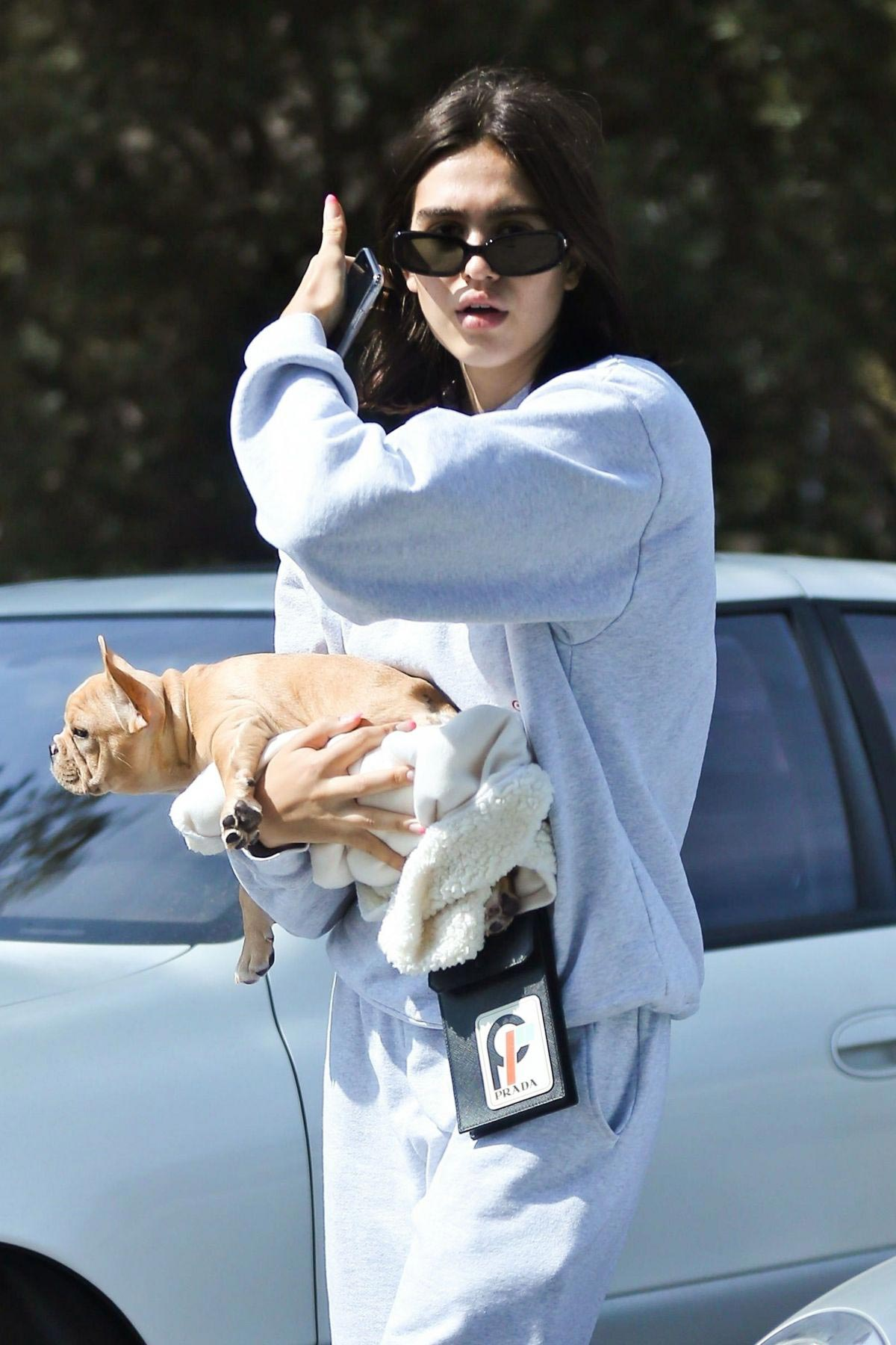 Amelia Gray Hamlin with Her Dog in Beverly Hills 2018/10/06 1