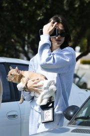 Amelia Gray Hamlin with Her Dog in Beverly Hills 2018/10/06 5