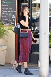 Katharine McPhee Out with Her Dog in Los Angeles 2018/10/18 3