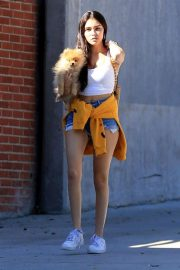 Madison Beer Out with Her Dog in West Hollywood 2018/10/16 4