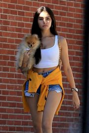 Madison Beer Out with Her Dog in West Hollywood 2018/10/16 13
