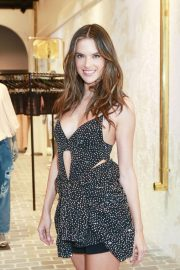 Alessandra Ambrosio at Rosa Cha Store Opening in Los Angeles 2018/11/02 7