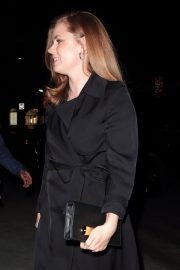 Amy Adams at a Private Theatre in Beverly Hills 2018/11/16 3