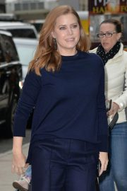 Amy Adams at Vice Preview Screening in New York 2018/11/26 8