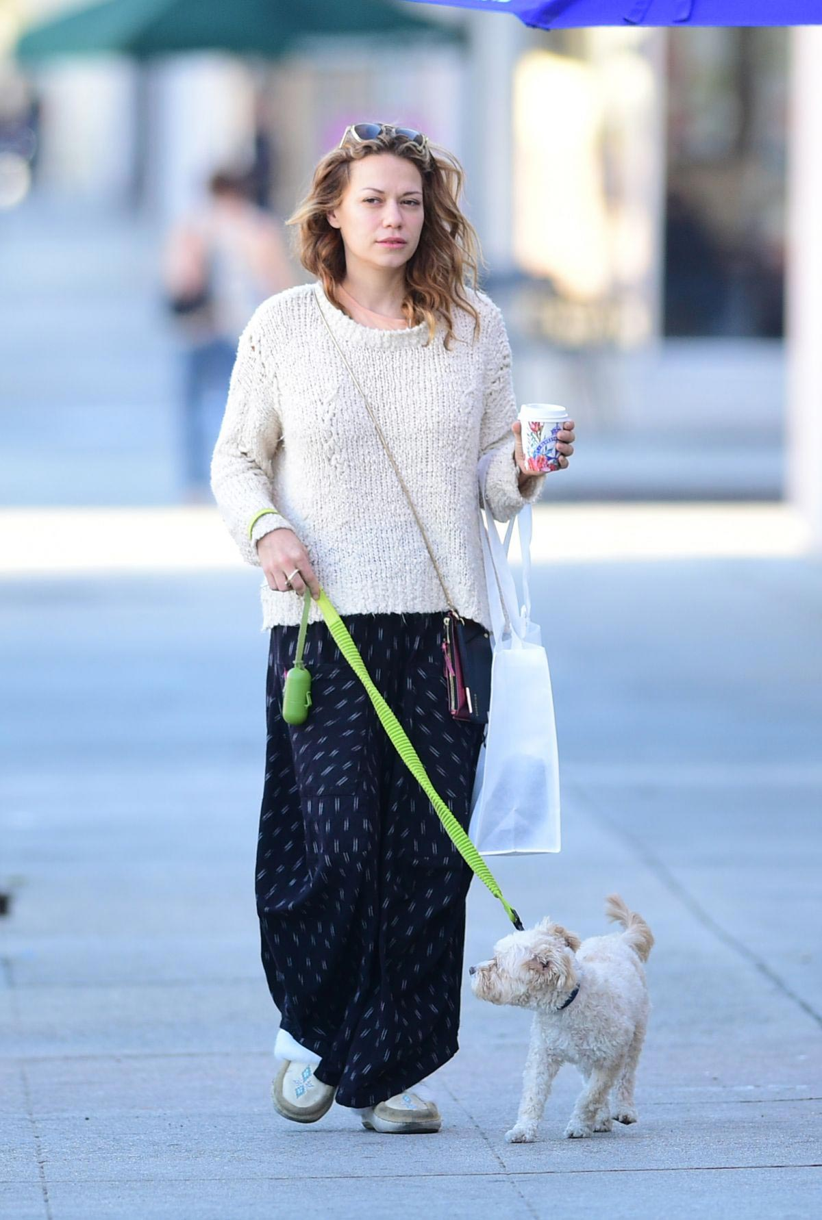 Bethany Joy Lenz Out with Her Dog in Los Angeles 2018/11/22 1