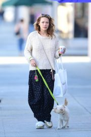 Bethany Joy Lenz Out with Her Dog in Los Angeles 2018/11/22 9