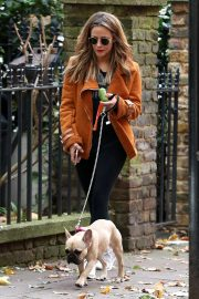 Caroline Flack Out with Her Dog in London 2018/11/06 1