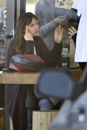 Dakota Johnson Out and About in Los Angeles 2018/11/12 3