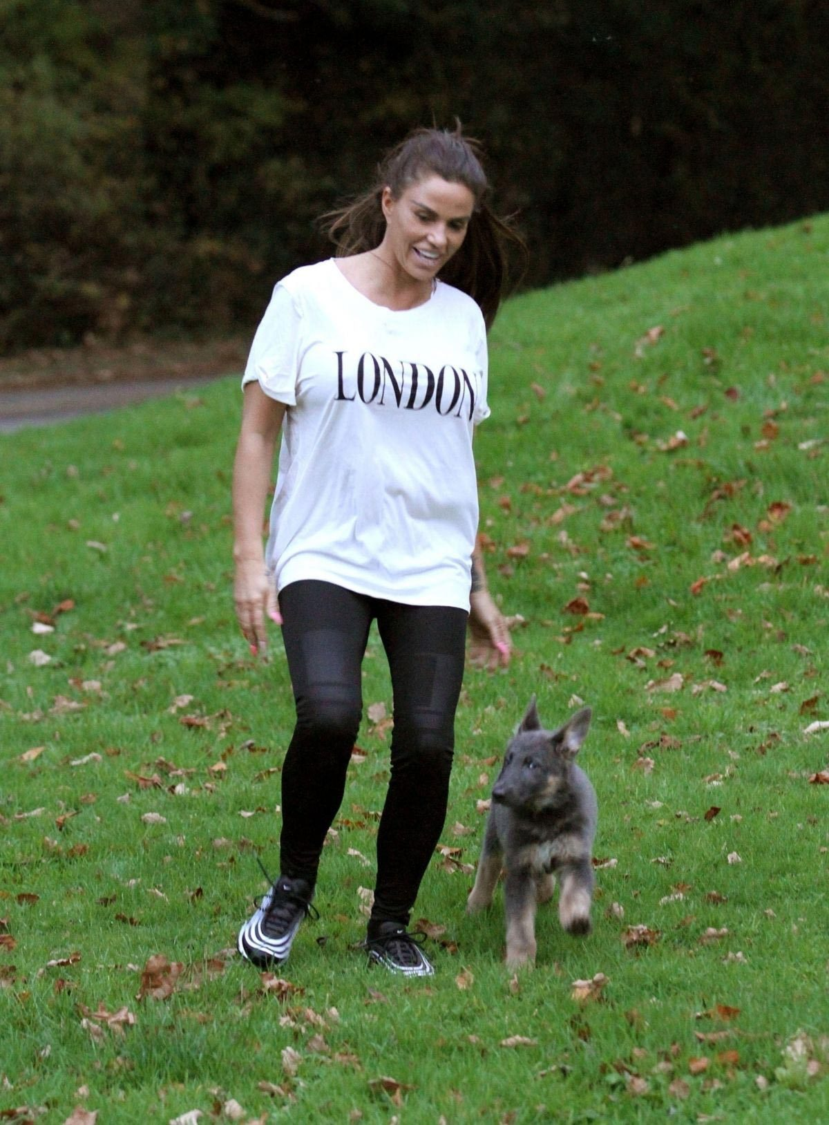 Katie Price Trains Her Dog at a Park in Brighton 2018/11/25 1