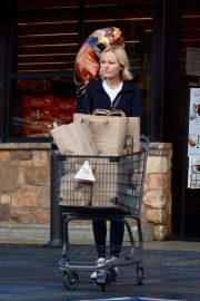 Malin Akerman Out Shopping in Los Angeles 2018 11 22 2