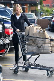 Malin Akerman Out Shopping in Los Angeles 2018 11 22 3