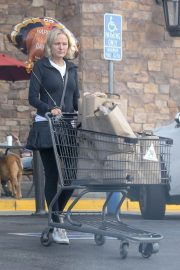 Malin Akerman Out Shopping in Los Angeles 2018 11 22 4