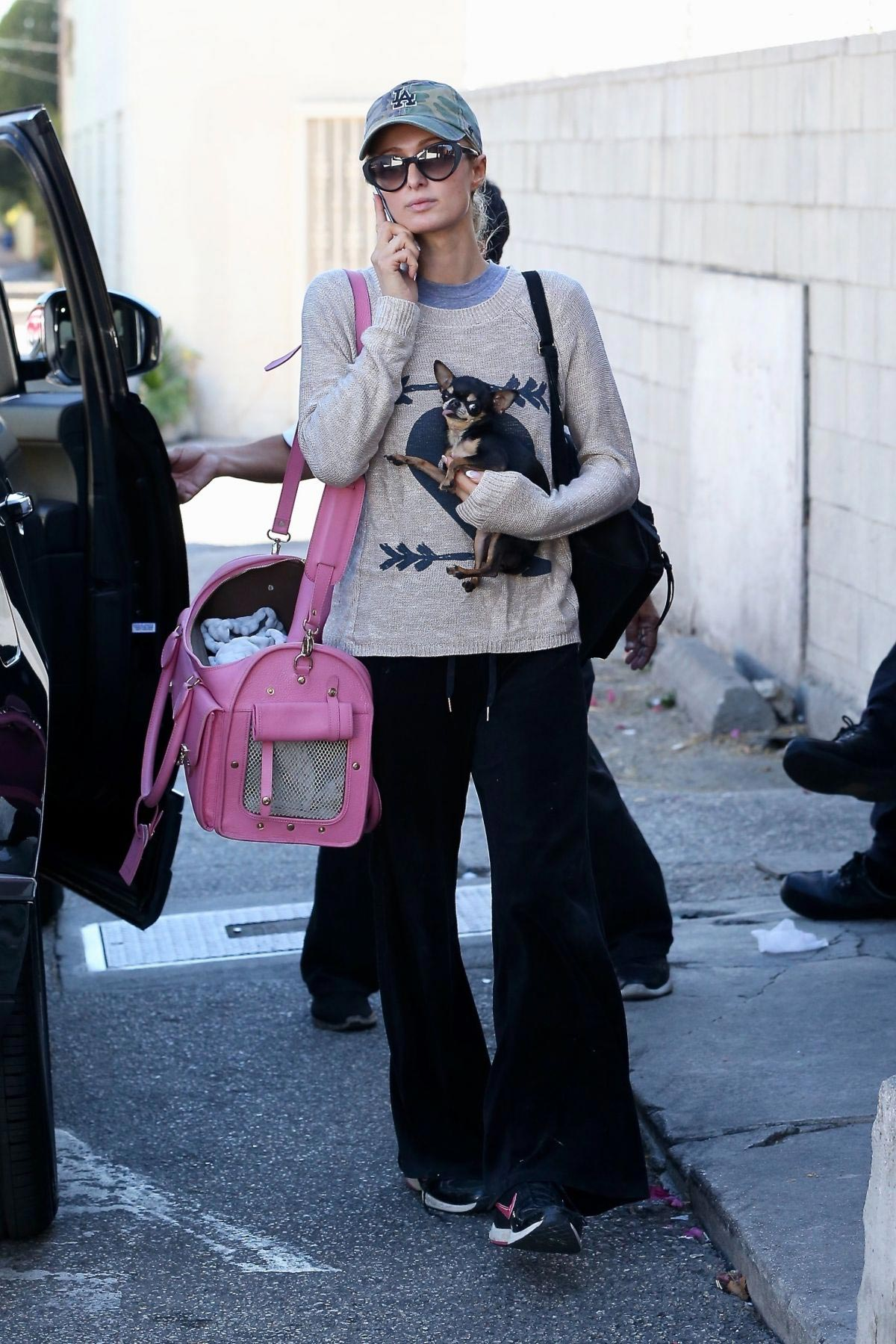 Paris Hilton Out with Her Dog in Beverly Hills 2018/11/02 1