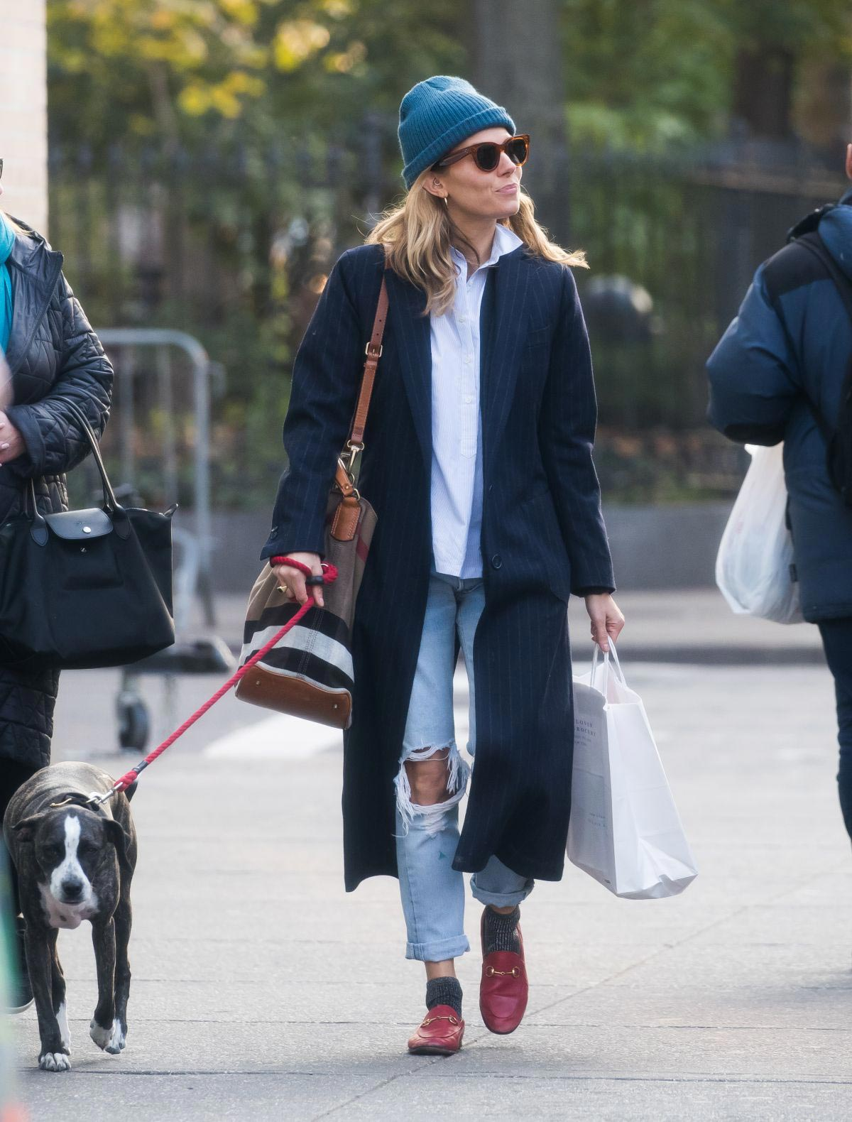 Sienna Miller Out with Her Dog in New York 2018/11/19 1