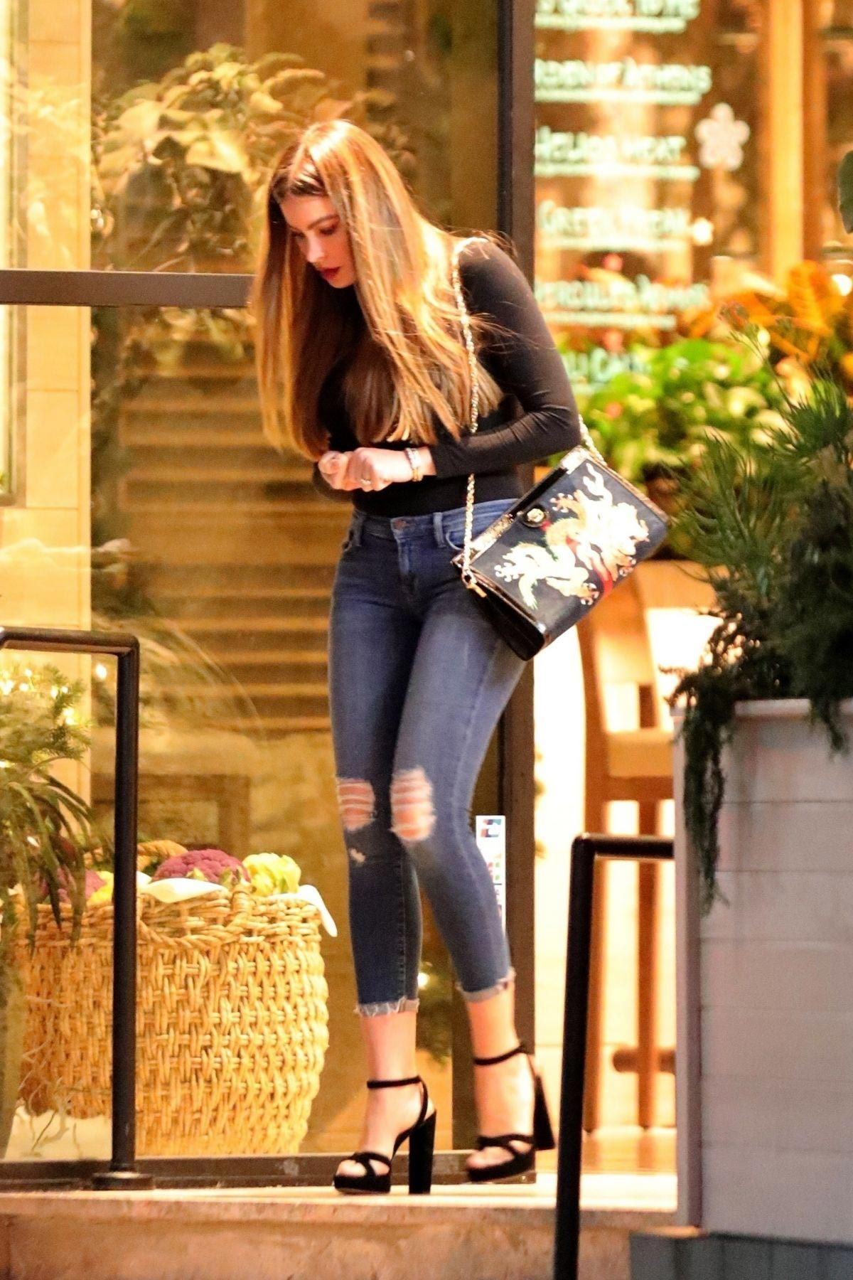 Sofia Vergara Out for Dinner in Beverly Hills 2018/11/25 1