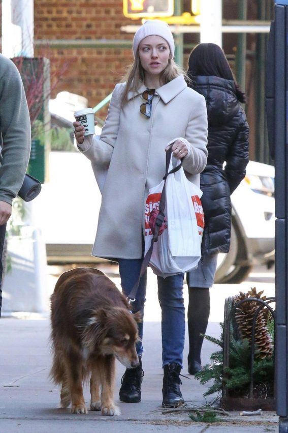 Amanda Seyfried Out with Her Dog in New York 2018/12/07 1