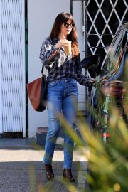 Dakota Johnson Out in West Hollywood 2018/12/20 1