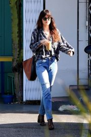 Dakota Johnson Out in West Hollywood 2018/12/20 4