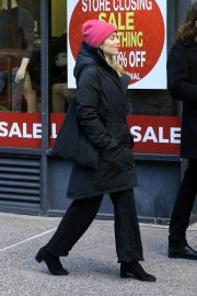 Dianna Agron and Winston Marshall Out in New York 2018/12/29 1