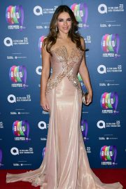 Elizabeth Hurley at Take That the Band Musical Gala Night in London 2018/12/04 6