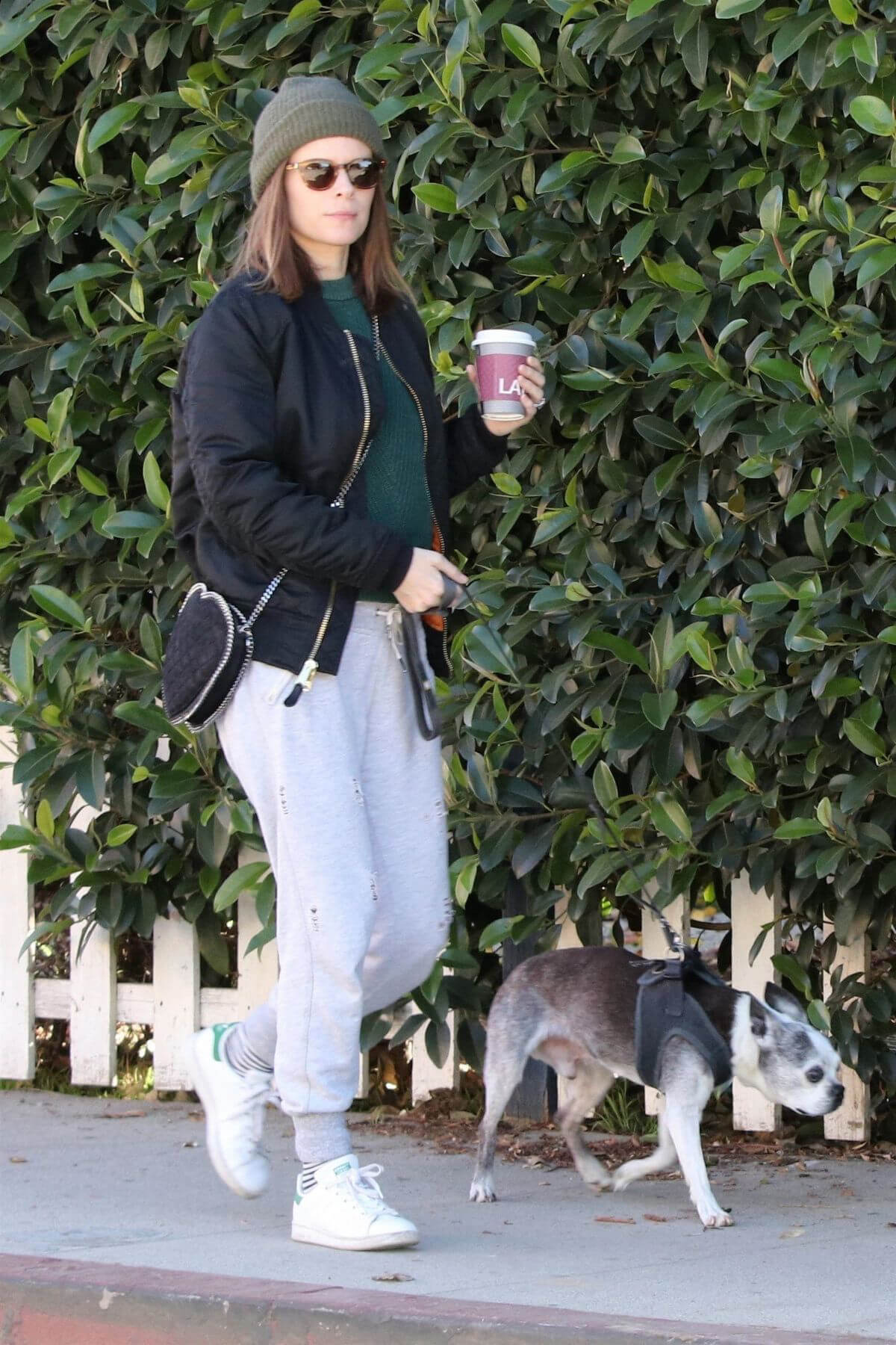 Kate Mara and Jamie Bell Out with Their Dogs in Los Angeles 2018/12/15 1