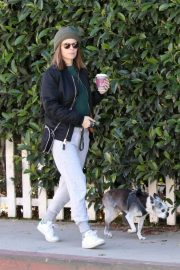 Kate Mara and Jamie Bell Out with Their Dogs in Los Angeles 2018/12/15 8