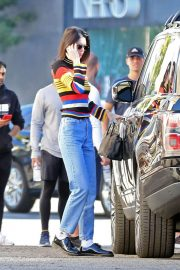 Kendall Jenner Out Shopping in Beverly Hills 2018/12/15 1
