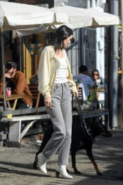 Kendall Jenner Out with Her Dog in Los Angeles 2018/12/16 1